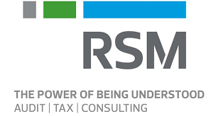 RSM International CA Firm, Chartered Accountant Firms India
